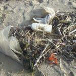 Glädjande miljöbeskedet: Färre plastpåsar i Nordsjön