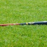 12-åring skapar över 100 basebollträn för att samla in pengar till samhället efter förödande storm